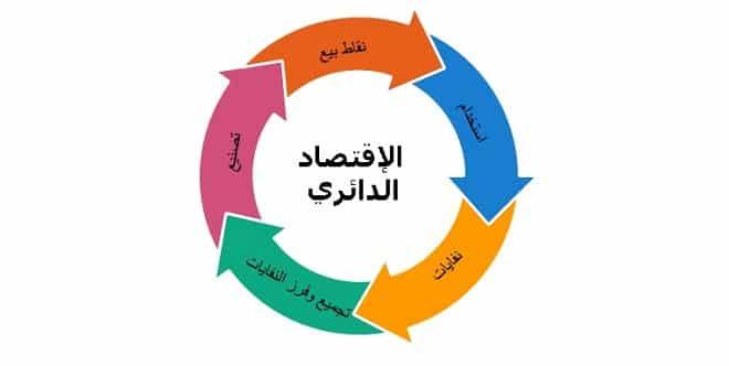 ecodiagram