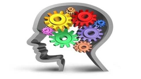 تكنولوجيا السلوك الإنساني, الدماغ, السلوك, العقل, النجاح, علم النفس,