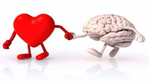 العلاقة القلب والعقل