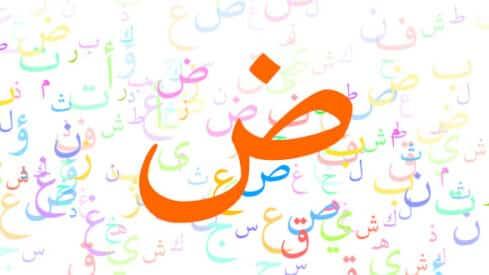"""عن اللغة العربية في ذكرى """"يومها"""", اللغة العربية, تطوير, دارجة, عامية, فصحى,"""
