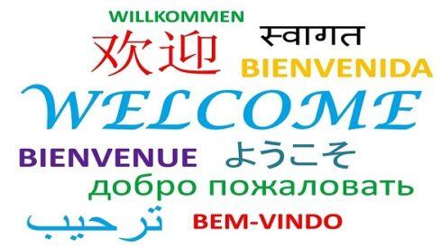 اللغة والحضارة