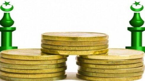 دور المالية الإسلامية في تحقيق أهداف التنمية الاقتصادية