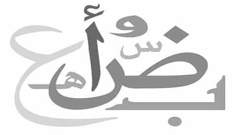 تجربتي مع اللغة العربية