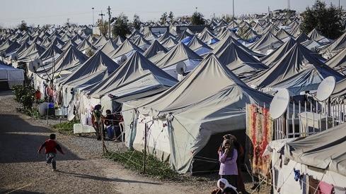 فتاوى تجيز دفع الزكاة لمفوضية الأمم المتحدة لشؤون اللاجئين, أمم متحدة, زكاة, فتوى, لاجئين,