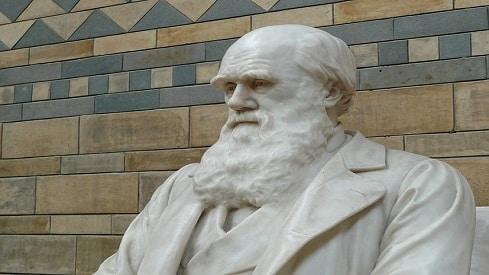نظرية التطور في ضوء القرآن وفهم السلف, داروين, طبيعة الخلق, نظرية التطور,