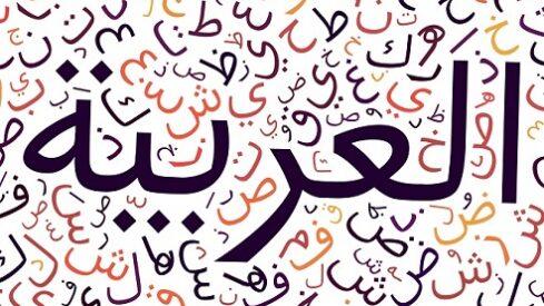 دعوات التجديد والتيسير في اللغة العربية, الفصحى, الفصحى والعامية, النحو والصرف, تعلم العربية, لغة الضاد,