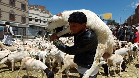 فتوى تثير جدلا بالمغرب تجيز الاقتراض الربوي لشراء الأضاحي !