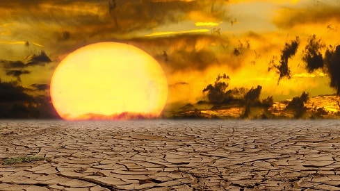 3 سيناريوهات للتنوع البيولوجي في مواجهة تغيرات المناخ, البيئة, الطقس, المناخ, الهجرة,