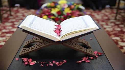 """الظواهر المَرَضية في القرآن (1-2), القرآن الكريم, المرض الاجتماعي, مبدئية """"العضوية"""","""