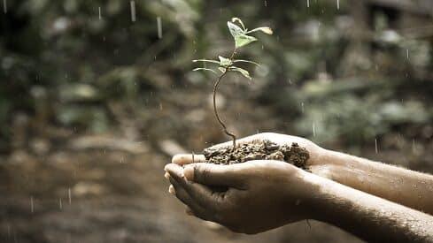 سرُّ عظمة الله تعالى في إنبات الأرض… رسائل للملحدين