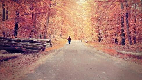 المشي .. حين يخطو العقل في دروب الأفكار