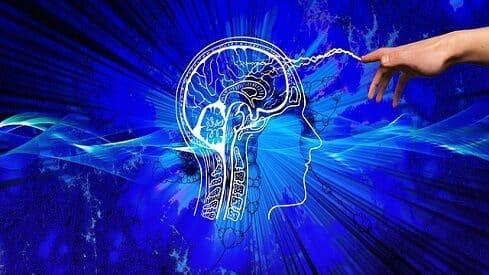 الفكر المقاصدي وبناء منهج التفكير