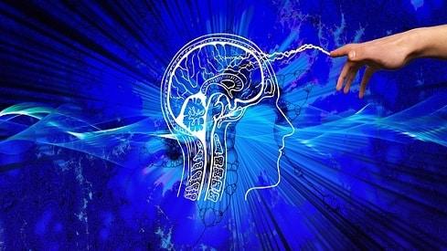 الفكر المقاصدي وبناء منهج التفكير (1), الثقافة الإسلامية, مقاصد الشريعة الإسلامية, منهج التفكير الإسلامي,