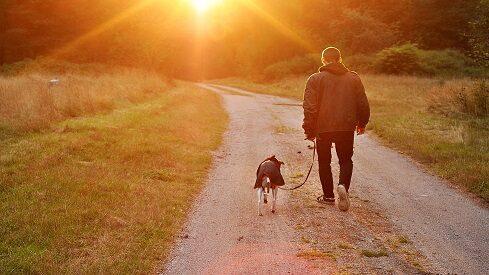 هل تربية الكلاب من ثقافتنا ؟