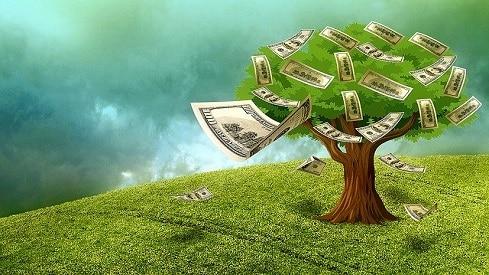ندرة الموارد بين الاقتصاد الإسلامي والتقليدي, الإقتصاد الإسلامي, الثروة الحيوانية, الثروة النباتية, الماء, الموارد الطبيعية,