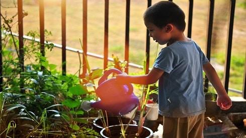 إطعام العالم دون إظمائه.. معادلة صعبة, الري والزراعة, الغذاء والماء, النظم البيئية,