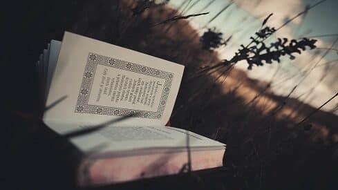 مفارقة التقليد والنقد العقيم عند متفلسفة عصرنا السقيم
