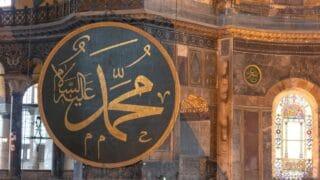 فقه النبي صلى الله عليه وسلم  في التَّعامل مع سنن الله