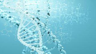 صورة ترمز إلى البصمة الوراثية