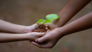 بناء الرسول للجانب الاقتصادي